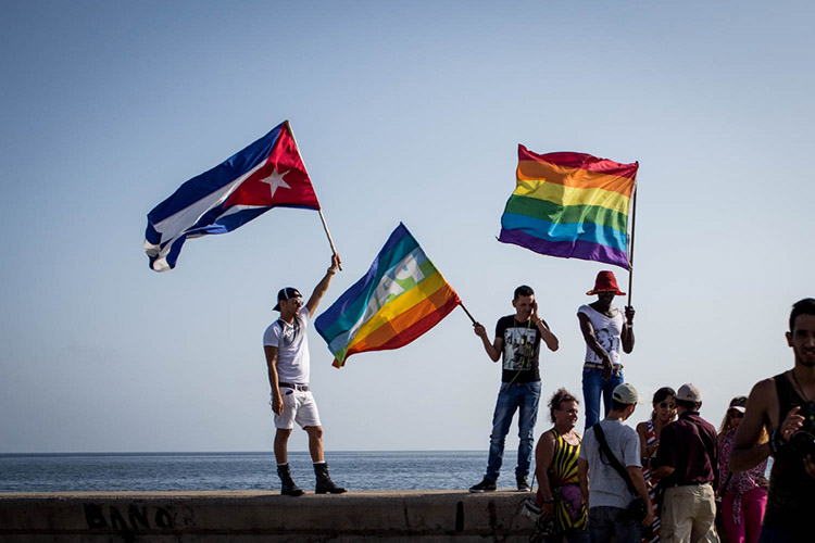 photo of people holding gay pride flags