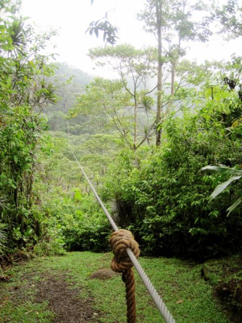 Study Abroad: Costa Rica ziplining