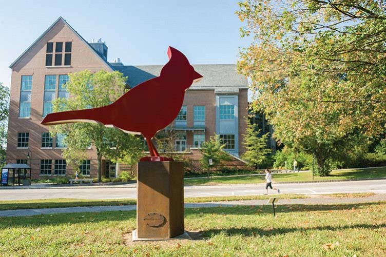 Cardinal, Dale Rogers, Photo Valerie Lester
